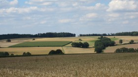 Typical Schwalm countryside near Asterode.