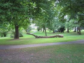 Der Botanische Garten in Eschwege