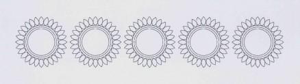Sonnenblume | sunflower f